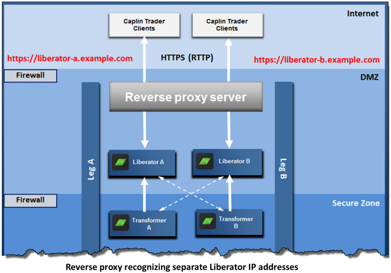 Reverse Proxy Recognizing Separate Liberator